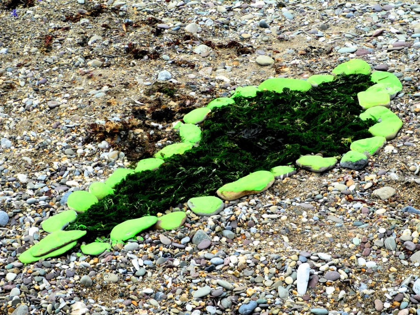 Palingenesis (green)